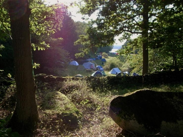 Camping i fårhagen