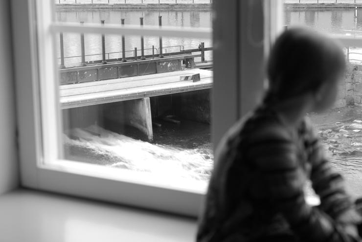 Fors från fönstret