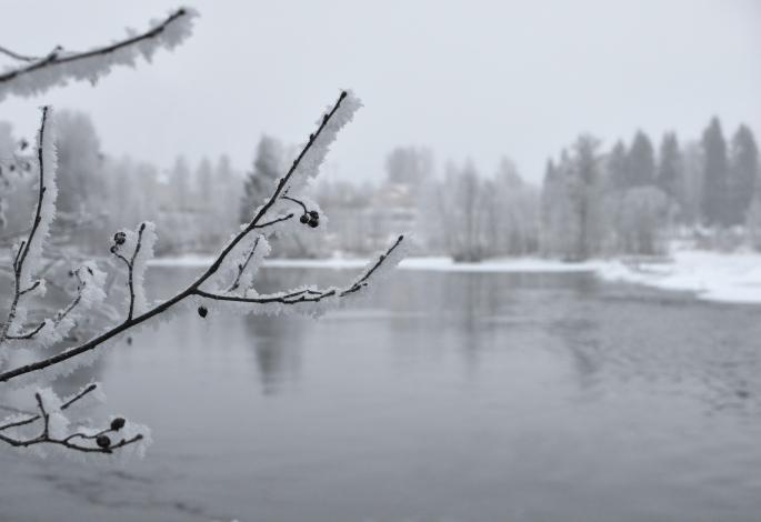 Laxforsen i Munkfors - Klarälven
