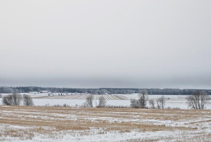 Vinterlandskap Lökene Kil