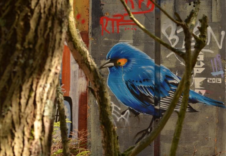 Blue Bird in the tree