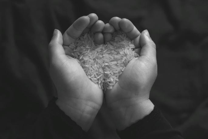 Heart of rice