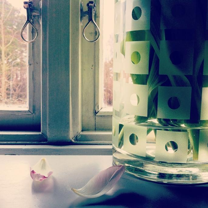 Tulpaner i fönstret