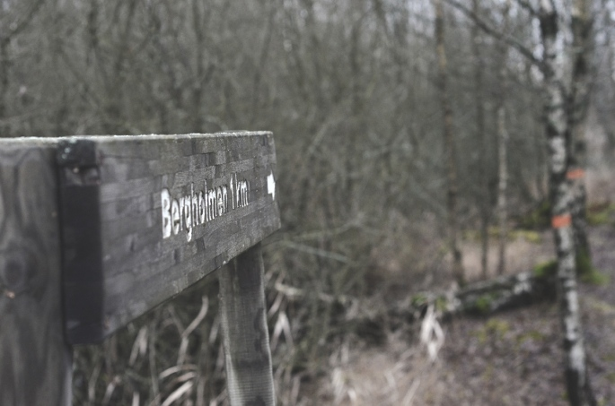 BergholmenSkylt2_webb_DSC_1504