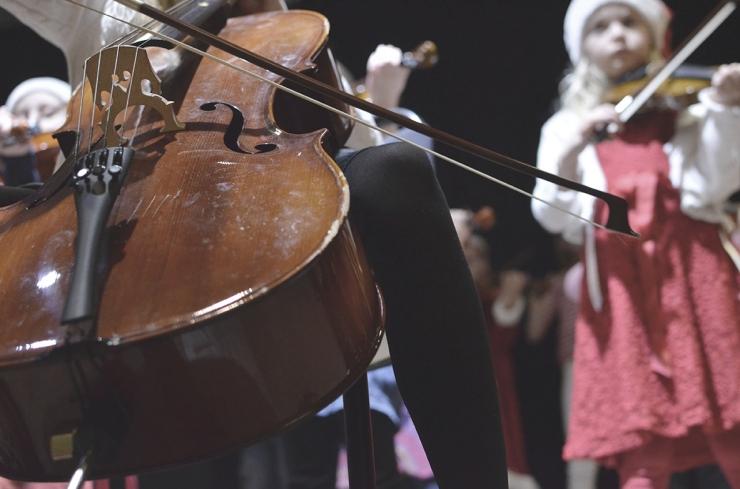 DSC_1710_Cellist_webb