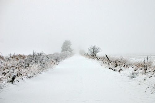 En väg in i vitt