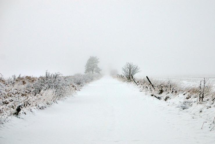 Vinterväg in i vitt