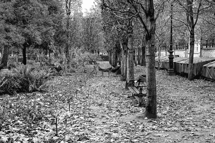 A break in the park