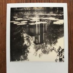 Originalbild 1.500:- Print 400:-