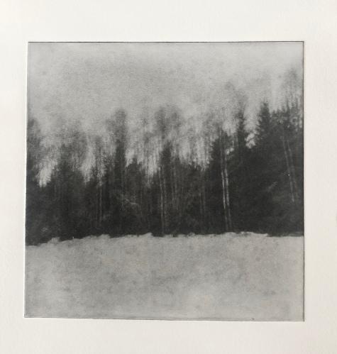 Vinterskog i oskärpa - Fotopolymer