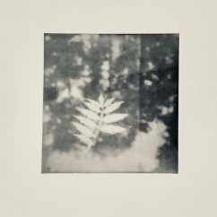 Nerför ån - Fotogravyr med fotopolymer