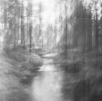 Tidlöshetens natur #2
