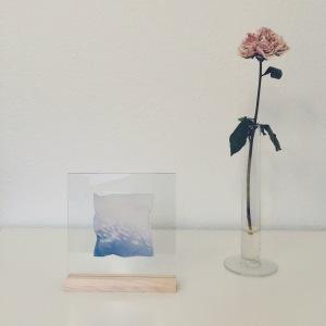 Emulsion lift on glass